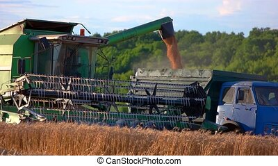 Combine unloads grain into car. Agricultural machines and...