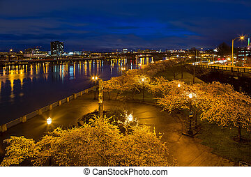 Cherry Blossom Trees at Portland Waterfront Park during Blue Hour