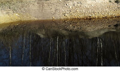Industrial Mining Water Pond Reflecting Trees in...
