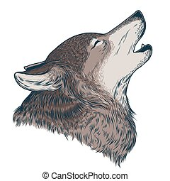 Vector illustration of a howling wolf, engraving. Print for...