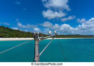 Yachts mast with seagulls and beautiful tropical beach on background
