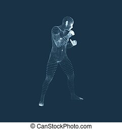 3D Human Body Model. Sport, Training and Martial Arts...