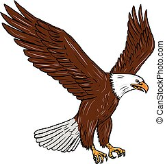 Bald Eagle Flying Drawing - Drawing sketch style...