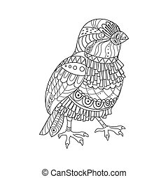 Sparrow coloring book vector illustration. Black and white...