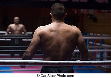 muscular professional kickboxer - portrait from the back of...