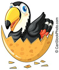 Toucan bird hatching egg illustration