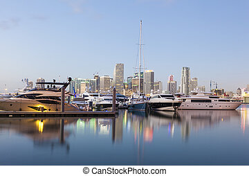 Luxury yachts in Miami, USA - Luxury yachts in front of the...