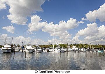 Marina in Florida - Yachts and fishing boats at the marina...