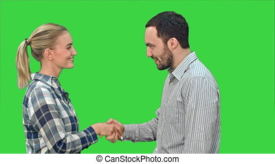 People meet and shake hands on a Green Screen, Chroma Key. -...