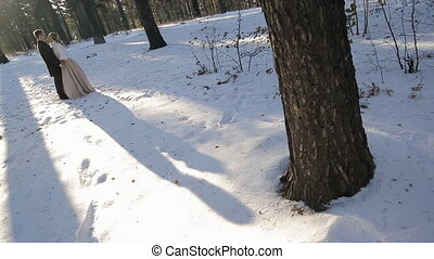 In the winter forest, a long shadow from the sun falls from...