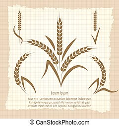 Wheat branches vintage poster design