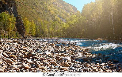 Fast mountain river in Altay - Fast mountain river with the...