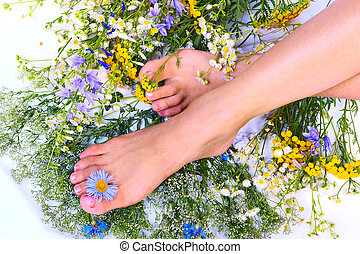 Woman legs - Beautiful woman legs and flowers over white...