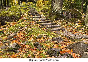 Stone ladder in autumn park Kadriorg, Tallinn