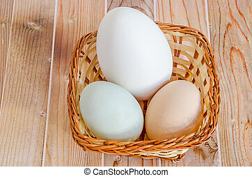 Collection of eggs, large white goose egg, light green duck...