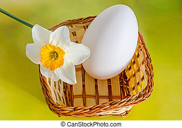 Large white goose egg in a brown basket, with a daffodil,...