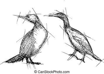 Cormorant Vector Pen Drawing - Hand pen drawn sketch vector...