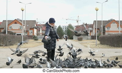 Woman aged 60s feeding flock of pigeons