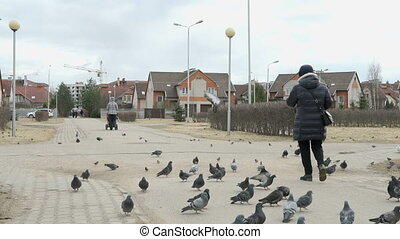 Adult woman feeding flock of pigeons in street