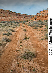 Track in the Muddy Desert drying after rain