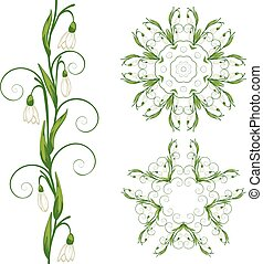 White Snowdrop Flowers - Blooming spring flowers white...