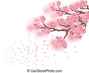 Branches with a blooming pink cherry and not with focused. Sakura. The petals fly in the wind. Isolated on white background. illustration