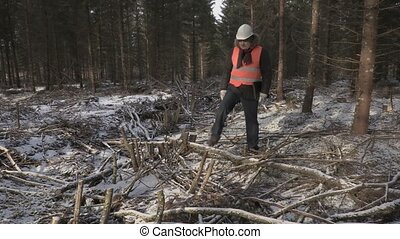 Lumberjack with laptop walking in destroyed forest
