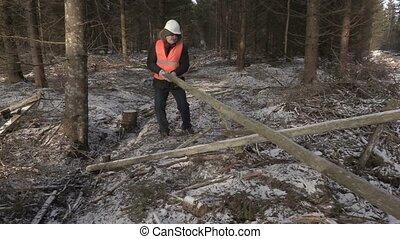 Lumberjack lifting up log