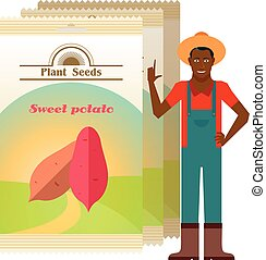 Pack of Sweet potato seeds - Vector image of the Pack of...