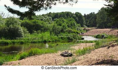 The river in the forest. 4K. - The river in the forest. Shot...