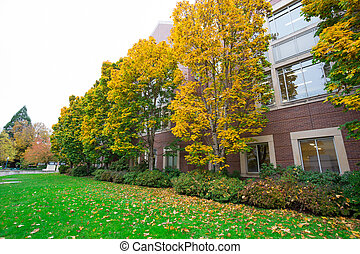Fall Foilage at University of Oregon - University of Oregon...