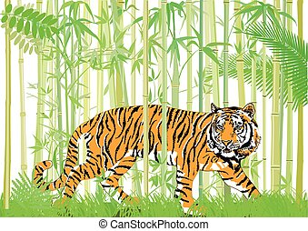 Tieger im  Jungle.eps - Tiger in the bamboo jungle