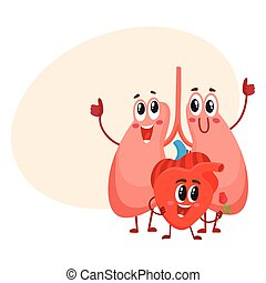 Funny, smiling human lungs and heart characters, chest...