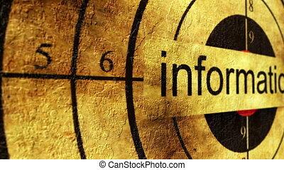Information grunge target concept