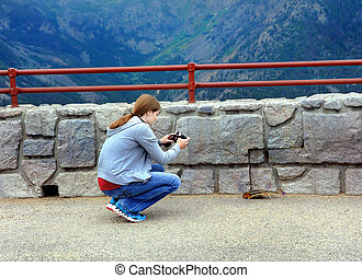 Chipmunk Snapshot - Young woman kneels and photographs a...