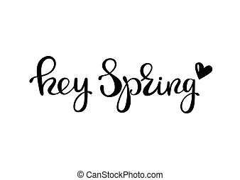 Hey spring - lettering design. Ink hand drawn letters....