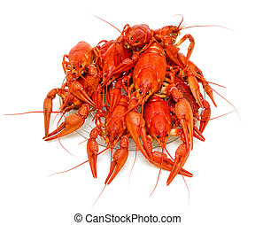 Boiled crayfish close-up on a white background. Horizontal...