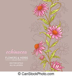 echinace purpurea vector background - echinace purpurea...