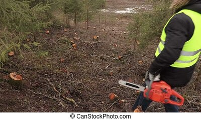Worker with chainsaw checking steep forest slope