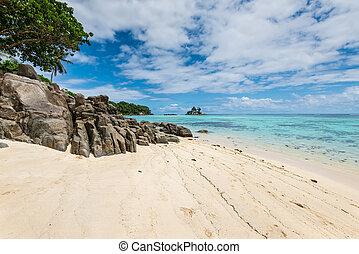 praia,  Seychelles, ilha,  Seascape,  -,  Mahe,  royale,  Anse