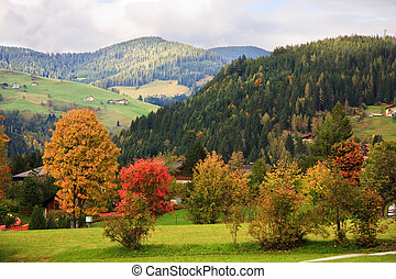 Autumn in Wagrain, Austria - Autumnal colours and mountains...