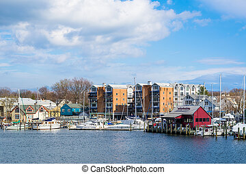 Buildings and marinas along Spa Creek, in Annapolis,...