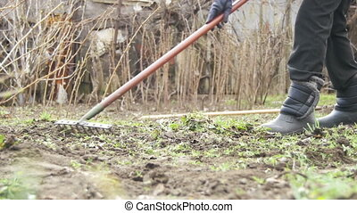 Woman is Cleaning the Weeds in the Garden with Rake Tool....