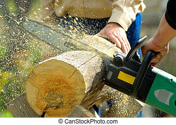 lumberjack at work - two lumberjacks at work, loggers