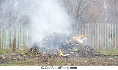 Burning Debris, Leaves, Small Trees and Weeds in the Garden on own Plot. Slow Motion