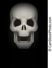 Dark Background of Human skull with open mouth.