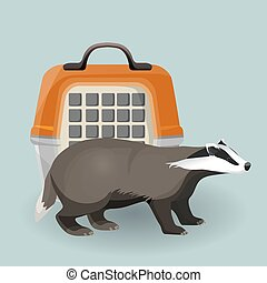 Badger carry cage and animal isolated on grey background -...