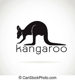 Vector of a kangaroo on white background. Wild Animals.