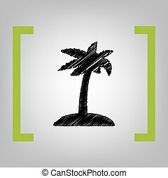 Coconut palm tree sign. Vector. Black scribble icon in...
