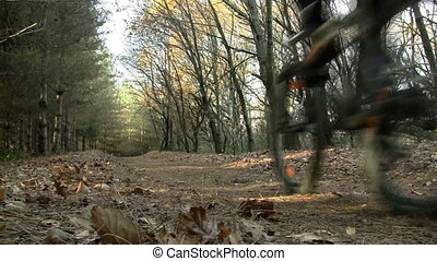 Mountain biking - Mountain biker going downhill in a forest...